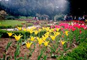 Отдых в Крыму на майские праздники 2013 из Харькова. Экскурсии в Крым