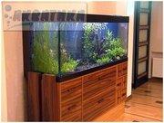 Скидки 5-20% на аквариумы ТМ Акватика.