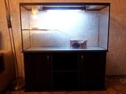 Продам террариум - аквариум