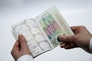 Оформление визы.  Шенген.  США.  Канада