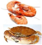 Продам Морепродукты Черноморские