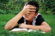 Коррекционная программа работы с детьми с проблемами в обучении