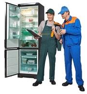 Ремонт и запчасти для холодильных шкафов