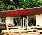 Незабываемый детский День Рождения в кафе «Kitty» в Харьковском зоопар