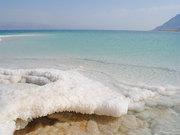 Оздоровительный тур на Мёртвом море в Израиле – от 899$