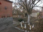 дом возле метро Барабашово