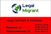 Легализация трудовых мигрантов в Польше