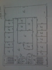 Аренда офисного помещения 480 м2 в Бизнес-центре (закрытый этаж)