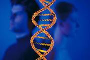 Тест ДНК на отцовство в Харькове