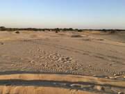 Экскурсия на родину Репина в город Чугуев и Кицевскую пустыню.