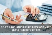 Отчеты для ФОП. Заполнение книги ФОП,  ФЛП,  сдача годового отчета