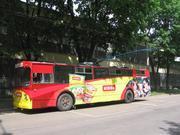 Размещение рекламы на городском транспорте